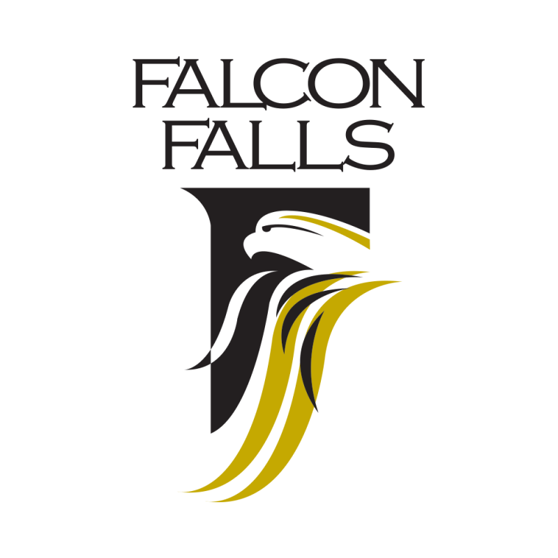 Wichita Falcon Falls Logo